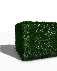 arquihedge02 – 3D View – Realistic FINE