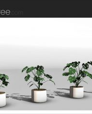 arquiplant05 – Sheet – 4 – Realistic – no edges – perspective