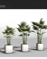 arquiplant09 – Sheet – 4 – Realistic – no edges – perspective