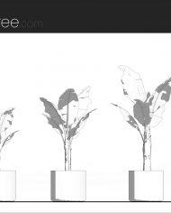 arquiplant10 – Sheet – 1 – Hidden line Elevation