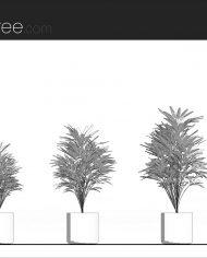 arquiplant11 – Sheet – 1 – Hidden line Elevation