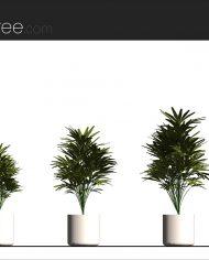 arquiplant11 – Sheet – 2 – Realistic – no edges – Elevation