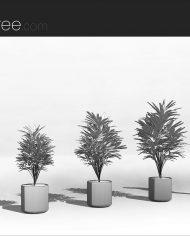 arquiplant11 – Sheet – 3 – Hidden line Perspective