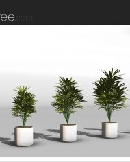 arquiplant11 – Sheet – 4 – Realistic – no edges – perspective