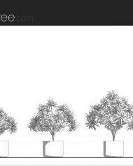 arquiplant12 – Sheet – 1 – Hidden line Elevation