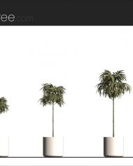 arquiplant13 – Sheet – 2 – Realistic – no edges – Elevation