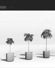arquiplant13 – Sheet – 3 – Hidden line Perspective