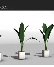 arquiplant16 – Sheet – 4 – Realistic – no edges – perspective