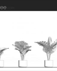 arquiplant18 – Sheet – 1 – Hidden line Elevation