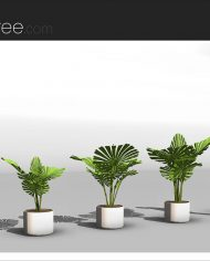 arquiplant18 – Sheet – 4 – Realistic – no edges – perspective