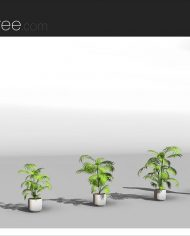 arquiplant25 – Sheet – 4 – Realistic – no edges – perspective