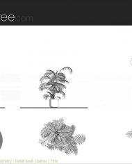 arquiplant25 – Sheet – 5 – Detail Levels