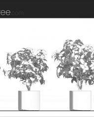 arquiplant27 – Sheet – 1 – Hidden line Elevation