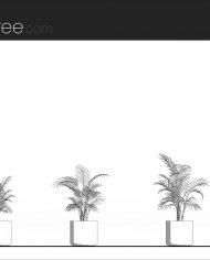 arquiplant29 – Sheet – 1 – Hidden line Elevation