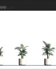 arquiplant29 – Sheet – 2 – Realistic – no edges – Elevation