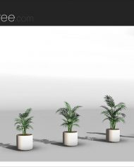 arquiplant29 – Sheet – 4 – Realistic – no edges – perspective
