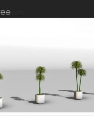 arquiplant30 – Sheet – 4 – Realistic – no edges – perspective