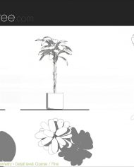 arquiplant31 – Sheet – 5 – Detail Levels