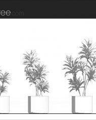 arquiplant38 – Sheet – 1 – Hidden line Elevation