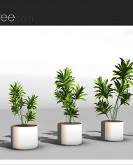 arquiplant38 – Sheet – 4 – Realistic – no edges – perspective