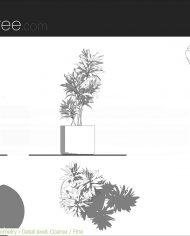 arquiplant38 – Sheet – 5 – Detail Levels