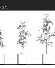 arquiplant41 – Sheet – 1 – Hidden line Elevation