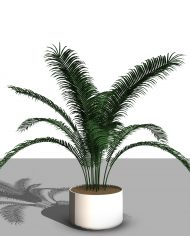 arquiplant43 – 3D View – Realistic FINE