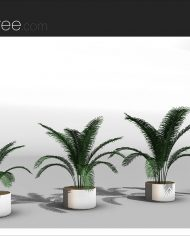 arquiplant43 – Sheet – 4 – Realistic – no edges – perspective