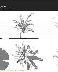 arquiplant44 – Sheet – 5 – Detail Levels