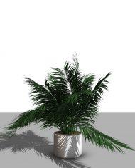 arquiplant46 – 3D View – Realistic FINE