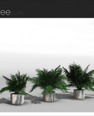 arquiplant46 – Sheet – 4 – Realistic – no edges – perspective