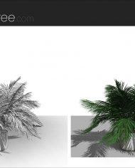 arquiplant46 – Sheet – 7 – Fine detail