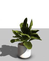 arquiplant48 – 3D View – Realistic FINE