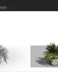 arquiplant49 – Sheet – 7 – Fine detail
