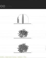arquishrub01 – Sheet – 5 – Detail Levels