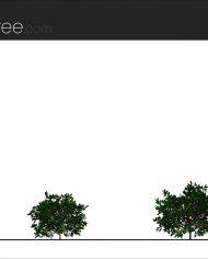 arquishrub02 – Sheet – 2 – Realistic – no edges – Elevation