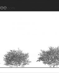 arquishrub04 – Sheet – 1 – Hidden line Elevation