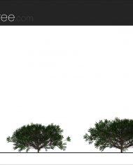 arquishrub06 – Sheet – 2 – Realistic – no edges – Elevation