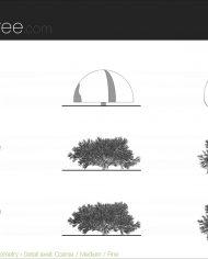 arquishrub06 – Sheet – 5 – Detail Levels