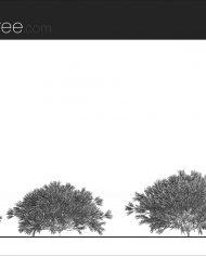 arquishrub07 – Sheet – 1 – Hidden line Elevation