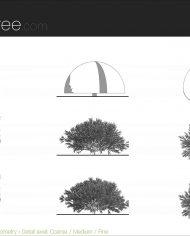 arquishrub07 – Sheet – 5 – Detail Levels