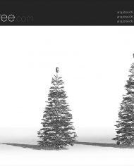 arquitree01 – Sheet – 3 – Hidden line Perspective