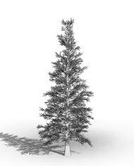 arquitree04_Detailed – 3D View – Hidden FINE