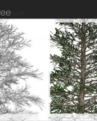 arquitree04_Detailed – Sheet – 6 – Detail Perspective