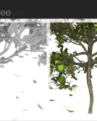 arquitree07_Detailed – Sheet – 6 – Detail Perspective