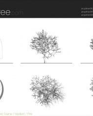 arquitree08_Detailed – Sheet – 5 – Detail Level