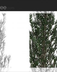 arquitree09 – Sheet – 6 – Detail Perspective