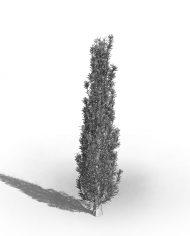 arquitree09_Detailed – 3D View – Hidden FINE