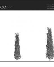 arquitree09_Detailed – Sheet – 1 – Hidden line Elevation