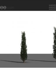 arquitree09_Detailed – Sheet – 4 – Realistic – no edges – perspective